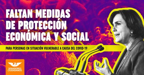Medidas de protección economica y social para persona en situacion vulnerable a causa de COVID19